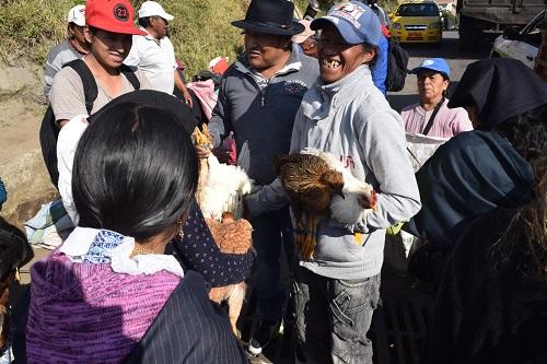 Menschen im Gespräch auf dem Tiermarkt in Otavolo in Ecuador.